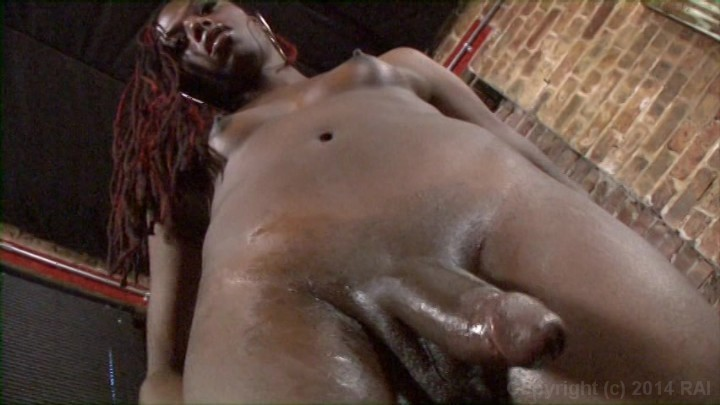 Sexy hunks Free transsexual pictures