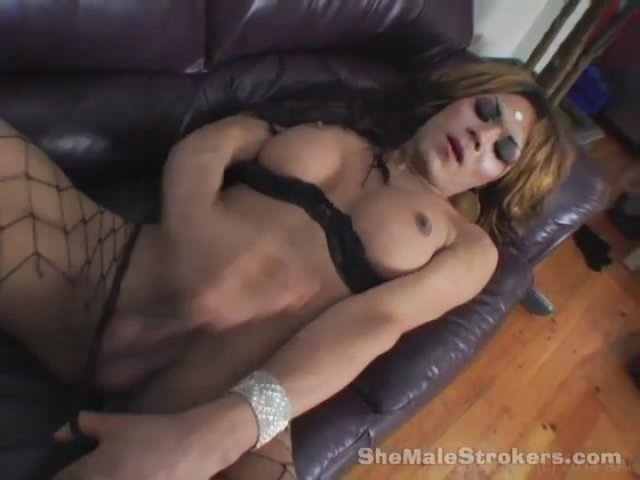 Free shemale transexual stories