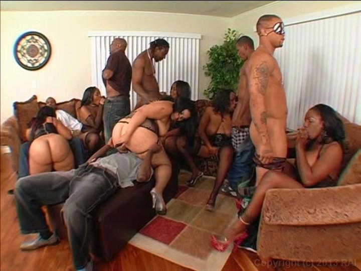 orgy world brown & round 7